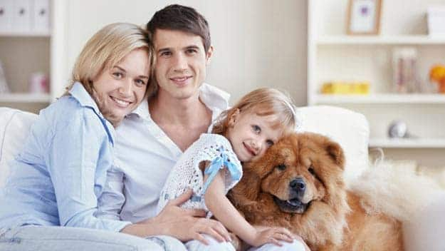 Wills & Trusts dog-young-family Direct Wills Worthing